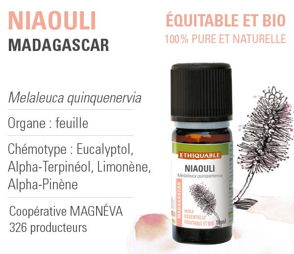 huile essentielle niaouli ethiquable bio equitable