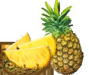 ananas madagascar équitable bio ethiquable