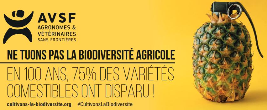 AVSF campagne biodiversité cultivée