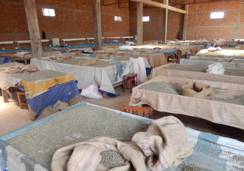 UMUCO W'IKAWA - Commerce équitable au Burundi