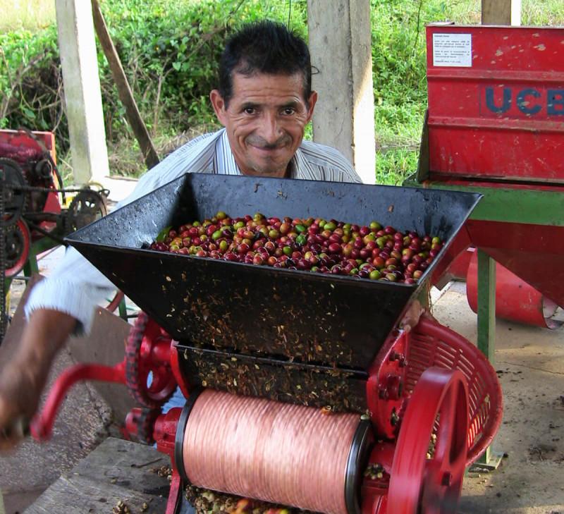 cafe-moulu-honduras-arabica-equitable-bio COMSA