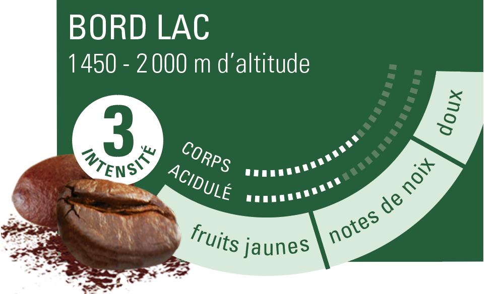 café arabica Congo Kivu ethiquable bio commerce équitable