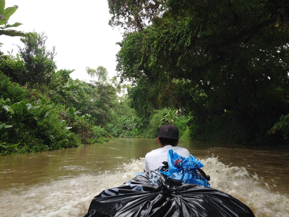 Transport du cacao à dos d'âne - coopérative cacao ASOROMCHAC - Equateur