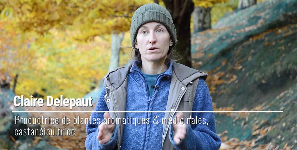châtaigne bio équitable Ardèche paysans d'ici