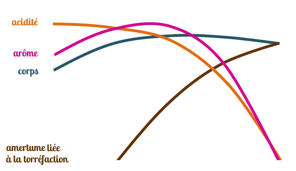 courbe arome acidité corps du café