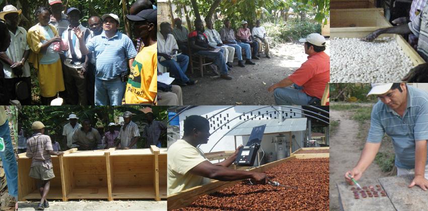 échange coopérative pérou haïti