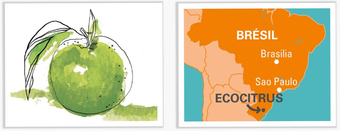 ecocitrus carte