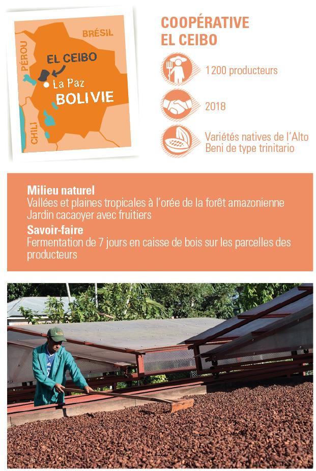 el ceibo cacao bolivie bio equitable