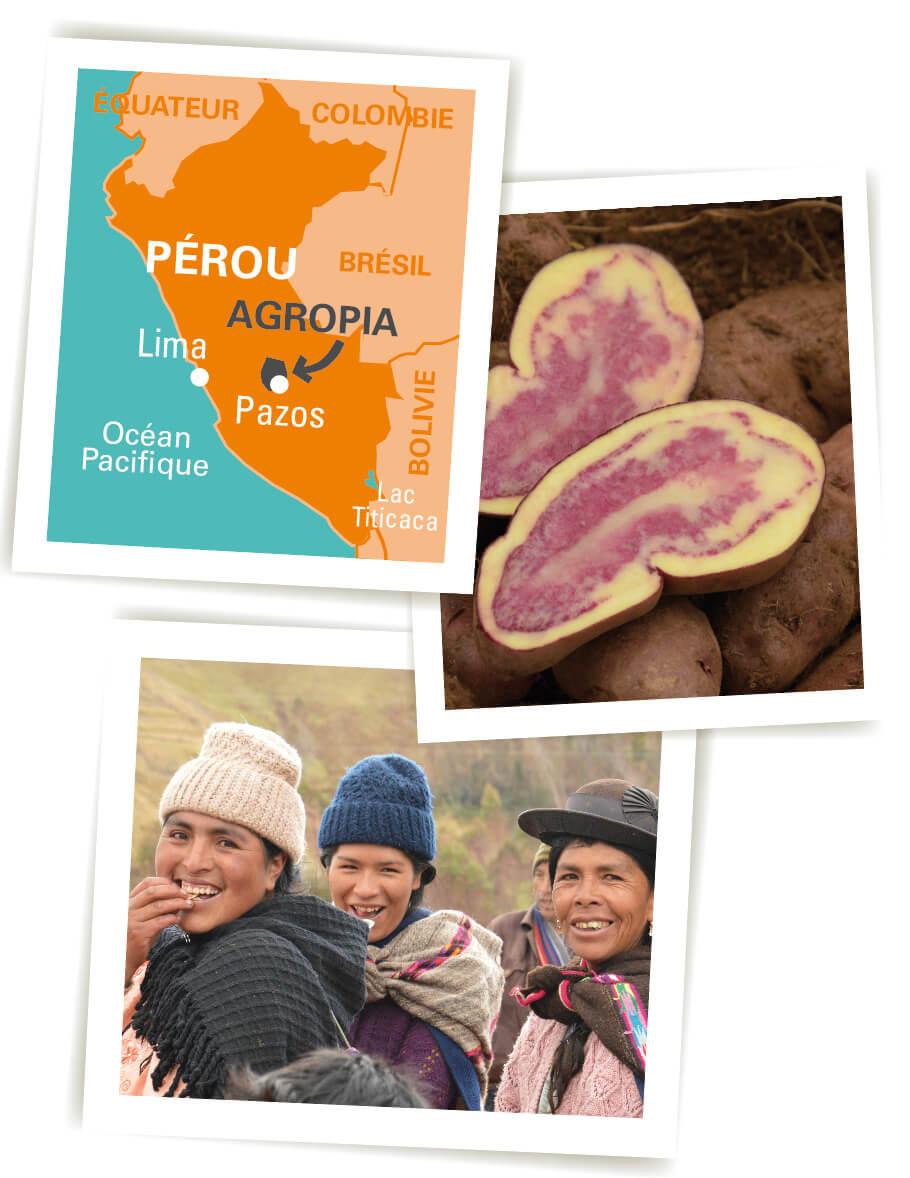 chips pomme de terre bleue perou equitable bio ethiquable