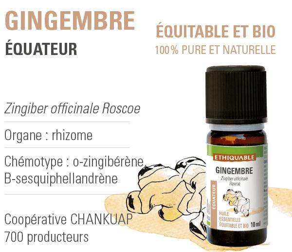 huile-essentielle - gingembre - equitable-bio-ethiquable