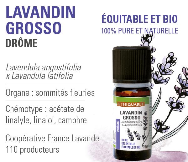 huile-essentielle - lavandin grosso - equitable-bio-ethiquable