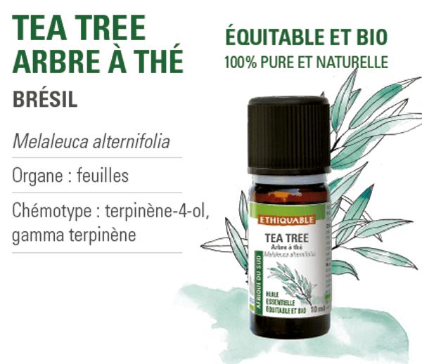 huile-essentielle - arbre à thé - equitable-bio-ethiquable