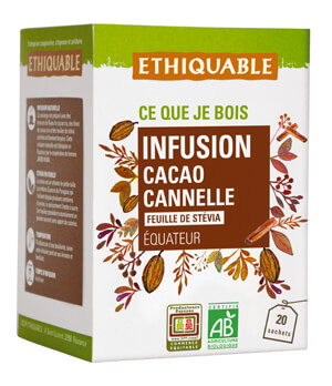 Infusion cacao cannelle