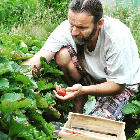 cueillette fraise bio equitable terr etic
