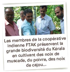 ftak noix de muscade bio equitable