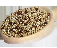 graine quinoa ethiquable bio equitable