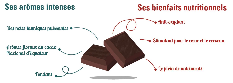 infographie cacao cru bienfait saveurs