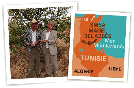 smsa tunisie