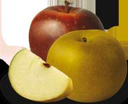 pomme bio équitable france