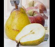 pomme poire bio équitable paysans d ici