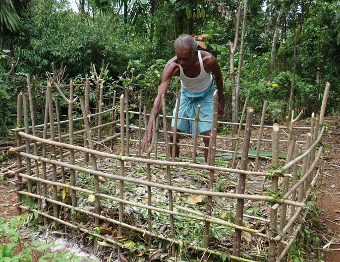 the-noir-cacao-tchai-srilanka-equitable-bio