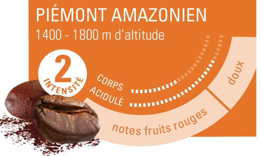 profil aromatique café Pérou ethiquable