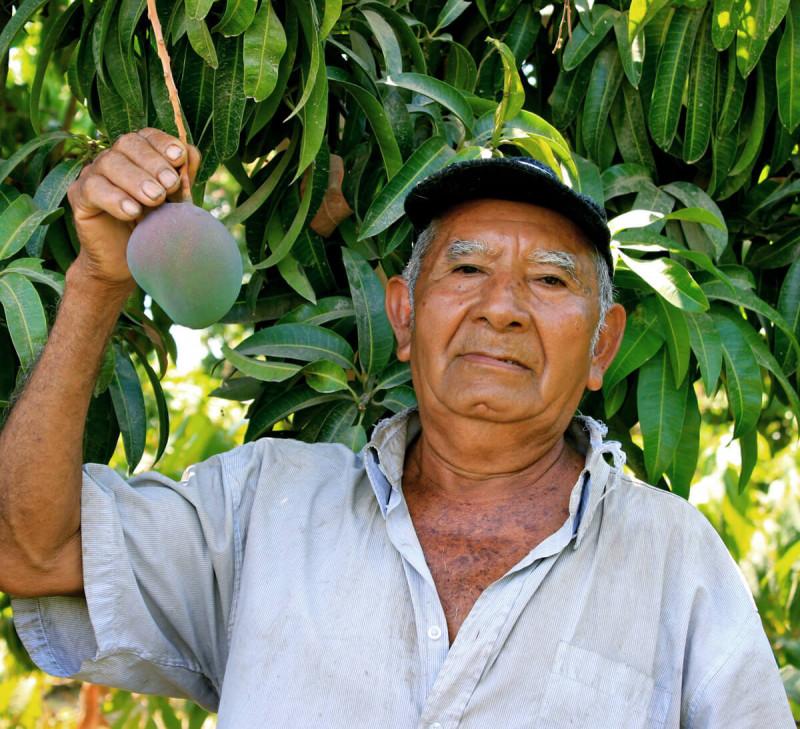 apromalpi puree-banane-mangue-passion-equitable-bio