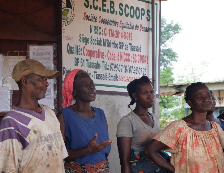 coopérative bio équitable côte d'ivoire cacao