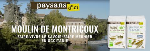 moulin de Montricoux