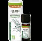 huile-essentielle - tea tree - equitable-bio-ethiquable