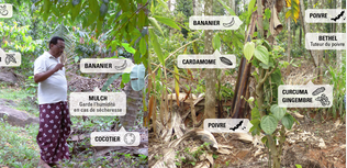 agroécologie intensive ethiquable