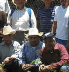 miel-Mexique-bio-équitable-ethiquable