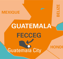 fecceg guatemala