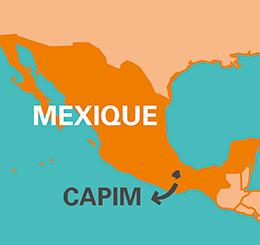 carte capim miel Mexique