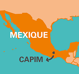 carte capim miel Mexique
