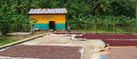 dossier de presse cacao ethiquableæ