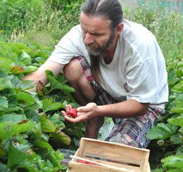producteur fraises commerce équitable