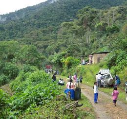 illampu café bolivie bio commerce équitable
