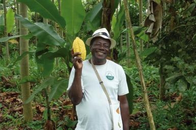 pratiques agroécologiques