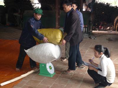 BAN LIEN ETHIQUABLE THé vert vietnam
