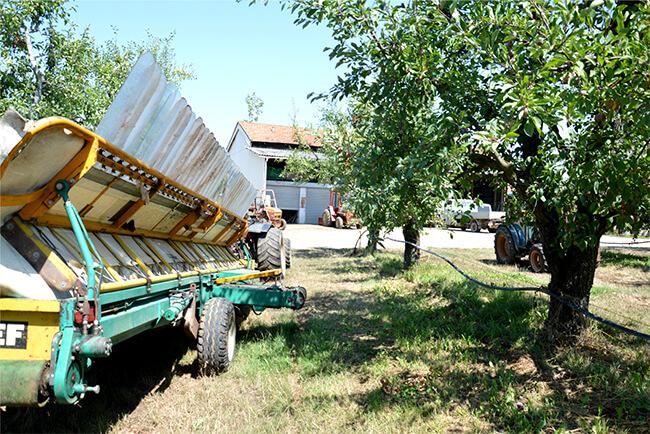upf pruneaux d'agen paysans d'ici bio équitable France